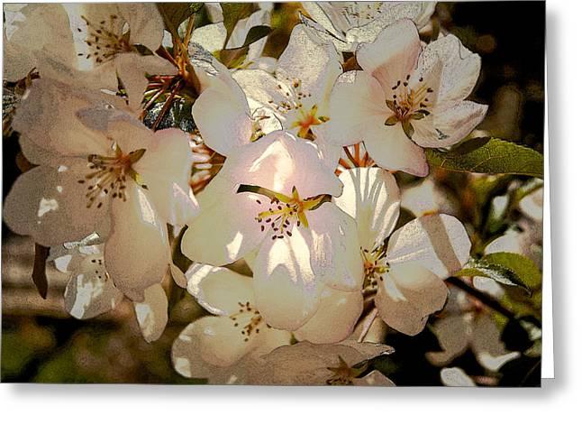 Fantasy Tree Greeting Cards - Blooming Apple 2 Greeting Card by Lana Art