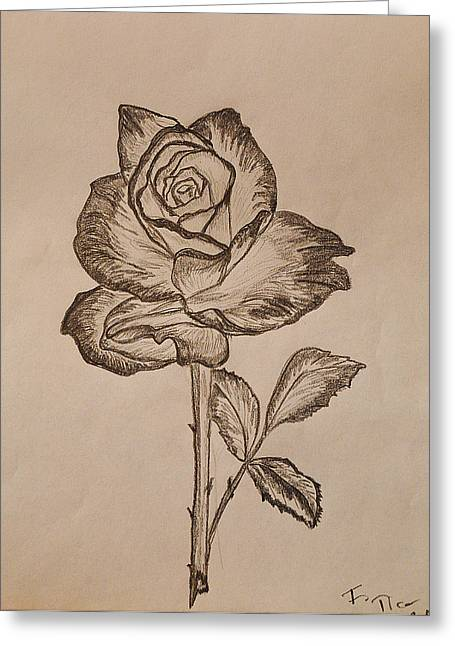 Red Photographs Drawings Greeting Cards - Blooming Rose Greeting Card by Felicia Tica