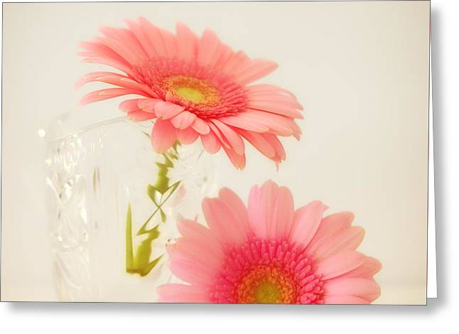 Fragrant Greeting Cards - Blossom Greeting Card by SK Pfphotography