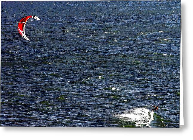 Para Surfing Greeting Cards - Blowing in the Wind Greeting Card by David Lee Thompson