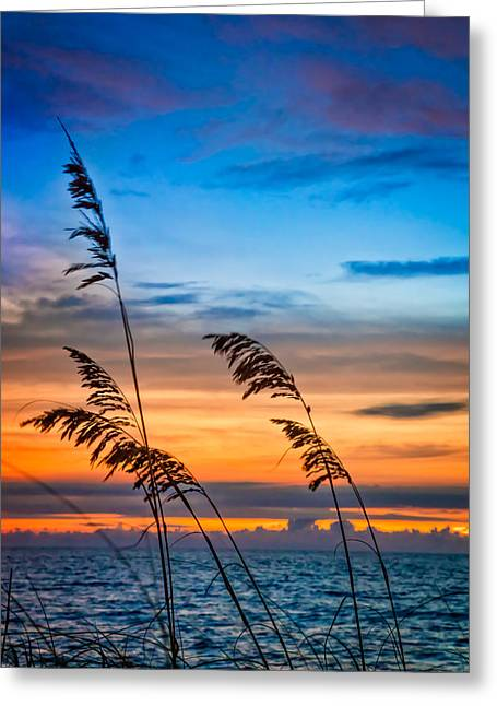 Abstract Waves Greeting Cards - Blowing in the Wind Greeting Card by Debra and Dave Vanderlaan