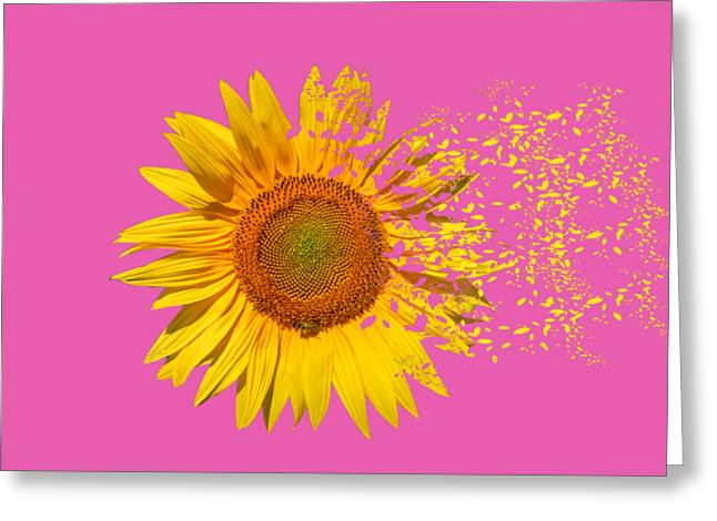 Blowing In The Wind Greeting Card by Roy Pedersen