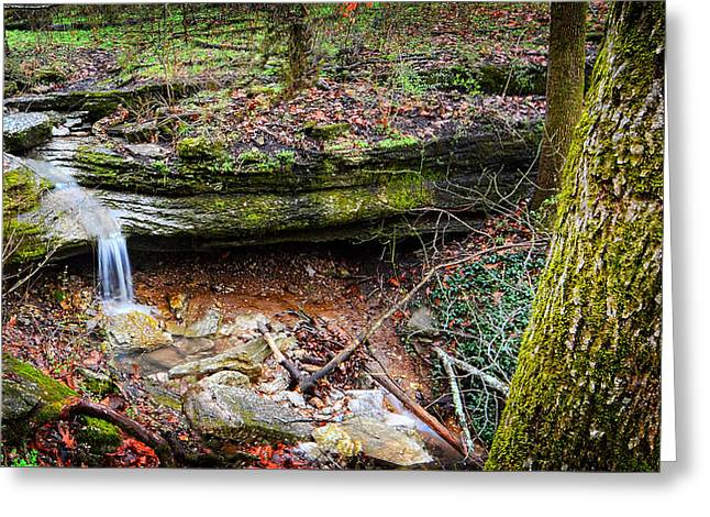 Blowing Springs Park Bella Vista Arkansas Greeting Card by Lourry Legarde
