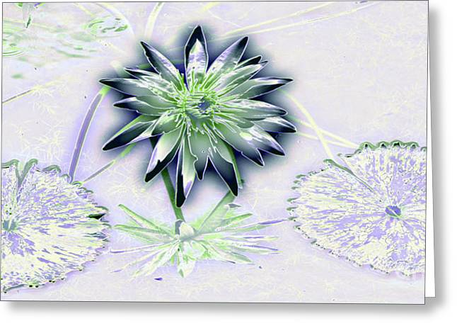Water Garden Tapestries - Textiles Greeting Cards - Blue and Green Lily Greeting Card by Edna Weber