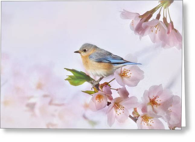 Crabapple Cards Greeting Cards - Blue and Pink Greeting Card by Lori Deiter