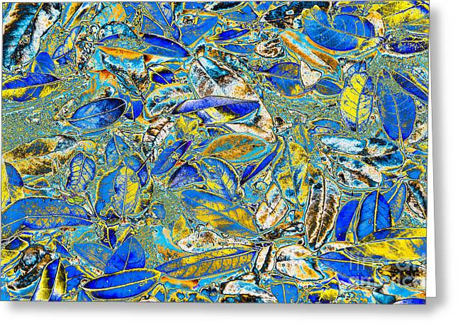 Color Enhanced Greeting Cards - Blue and Yellow Fallen Leaves Greeting Card by Debra Martz