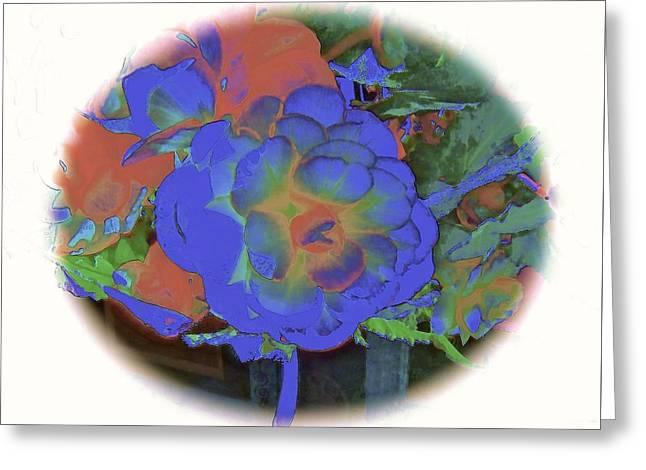 Blue Begonias Greeting Cards - Blue Begonia Greeting Card by Elizabeth Tillar