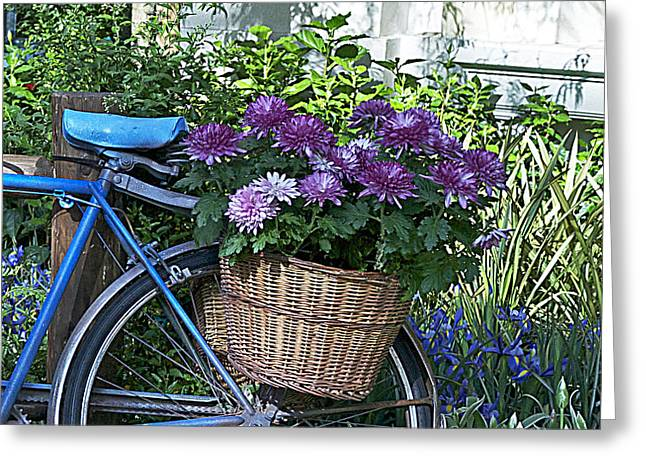 Blue Bike Greeting Card by Cheri Randolph