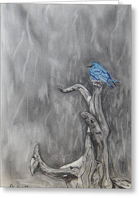 Blur Drawings Greeting Cards - Blue bird Greeting Card by Ramon Martinez sanmarti