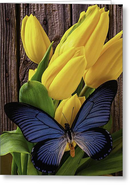 Yellow Leaves Greeting Cards - Blue Butterfly On Yellow Tulips Greeting Card by Garry Gay
