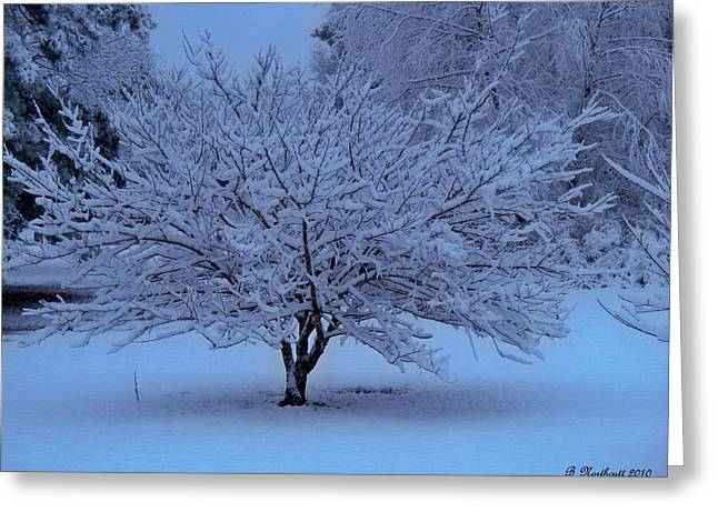 Blue Christmas Greeting Card by Betty Northcutt