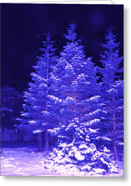 Fir Pyrography Greeting Cards - Blue Christmas  Greeting Card by Laurie Kidd