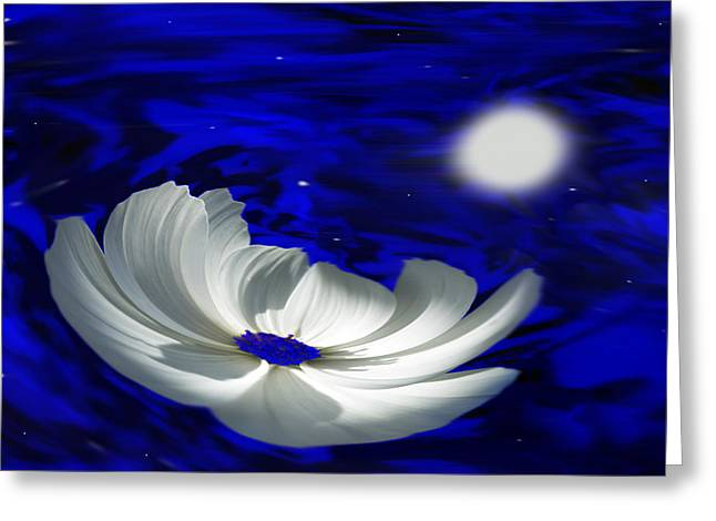 Floral Digital Art Greeting Cards - Blue Cosmos Greeting Card by Terence Davis