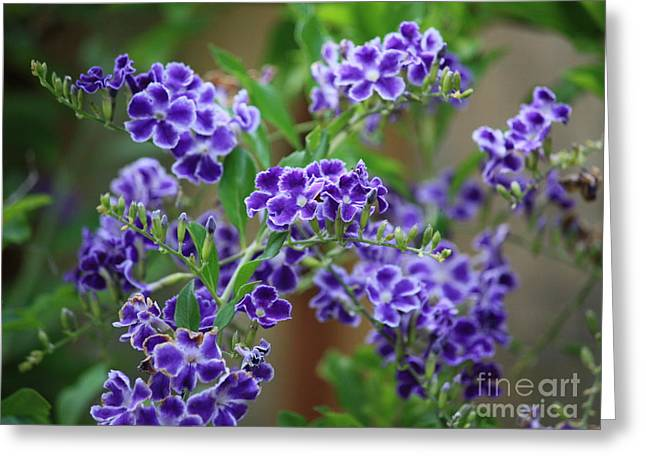 Blue Cottage Flowers Greeting Card by Carol Groenen