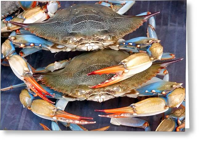 Callinectes Sapidus Greeting Cards - Blue Crabs Greeting Card by Nancy Comley