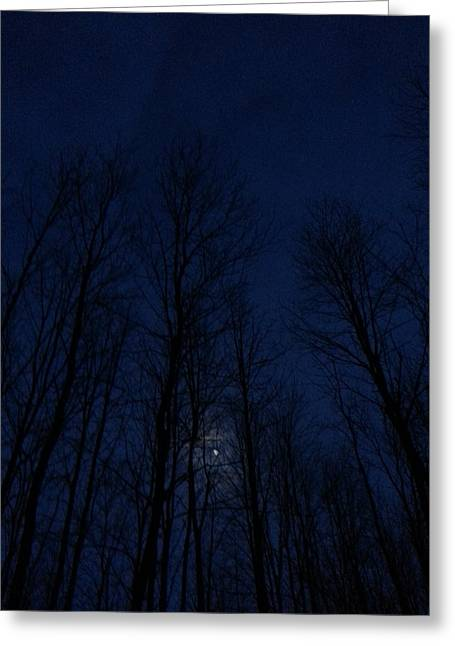 Dusk Sculptures Greeting Cards - Blue Dusk Moon Greeting Card by Janet  Lipp
