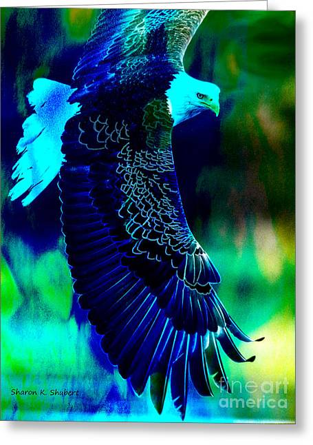 Blue And Green Greeting Cards - Blue Eagle In Flight Greeting Card by Sharon K Shubert