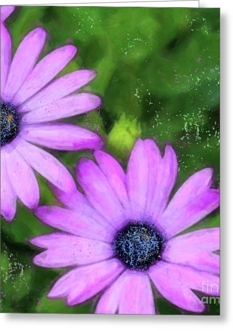 Floral Photographs Digital Greeting Cards - Blue-eyed African Daisies Greeting Card by Betty LaRue