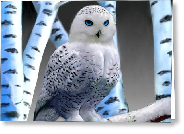 Imaginary Realism Greeting Cards - Blue-eyed Snow Owl Greeting Card by Glenn Holbrook