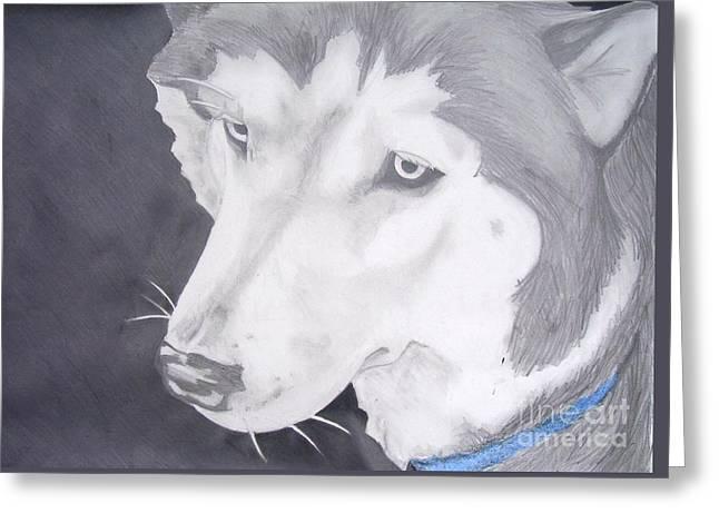 Huskies Drawings Greeting Cards - Blue Eyes Greeting Card by Sarah Quezada