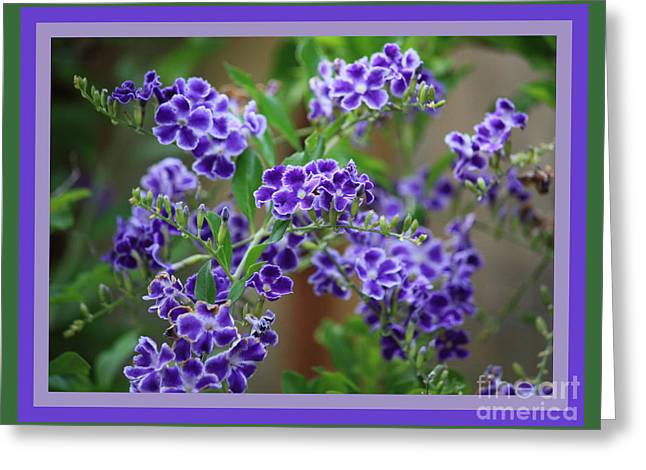 Blue And Green Digital Art Greeting Cards - Blue Flowers with Colorful Border Greeting Card by Carol Groenen