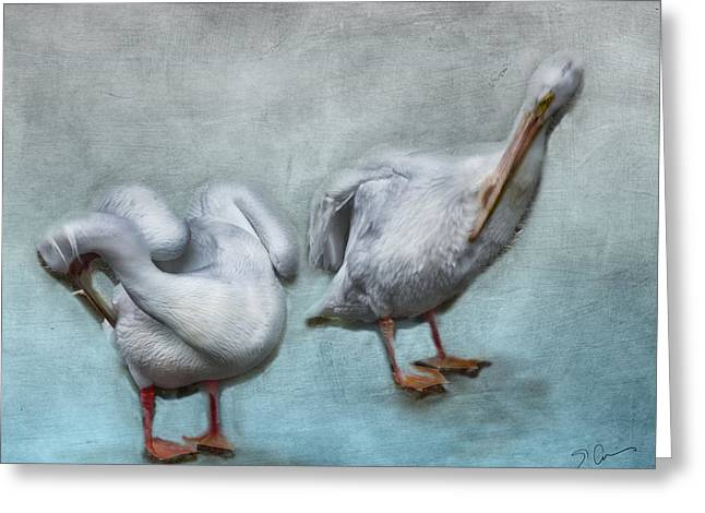 Sea Birds Greeting Cards - Blue Friend Greeting Card by Evie Carrier
