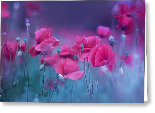 Blue Garden Poppies Greeting Card by Magda  Bognar