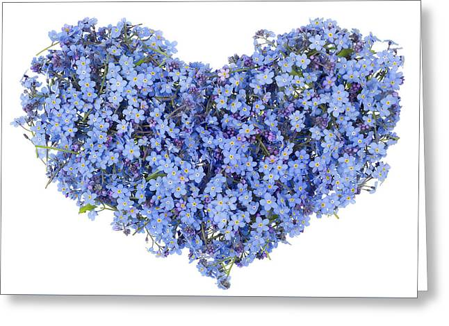 Flower Design Greeting Cards - Blue heart of the gentle guy  Greeting Card by Aleksandr Volkov