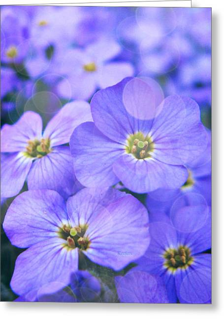 Flower Blooms Mixed Media Greeting Cards - Blue Heaven Greeting Card by Cathie Tyler
