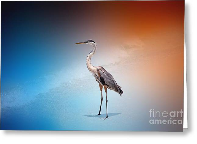Flying Seagull Greeting Cards - Blue Heron 46 by Darrell Hutto Greeting Card by Darrell Hutto