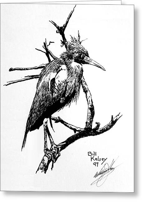 Pen And Ink Drawing Greeting Cards - Blue Heron Greeting Card by William Kelsey