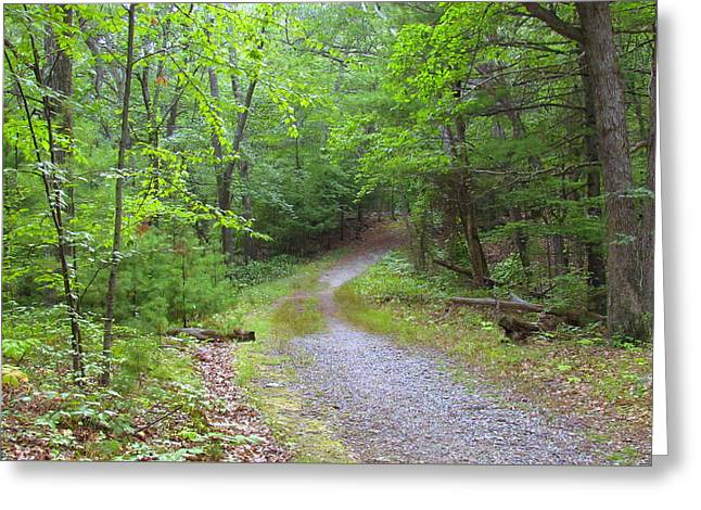 Boston Ma Greeting Cards - Blue Hills Reservation Greeting Card by Lori Pessin Lafargue