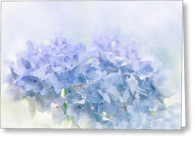 Blue Hydrangea Light Greeting Card by Terry Davis