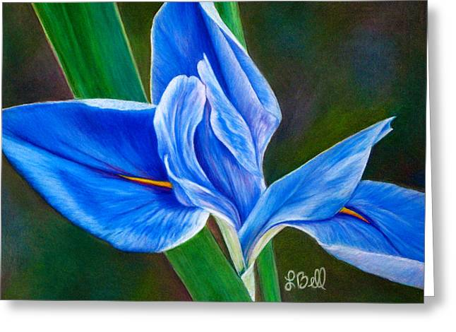 Spring Pastels Greeting Cards - Blue Iris Greeting Card by Laura Bell