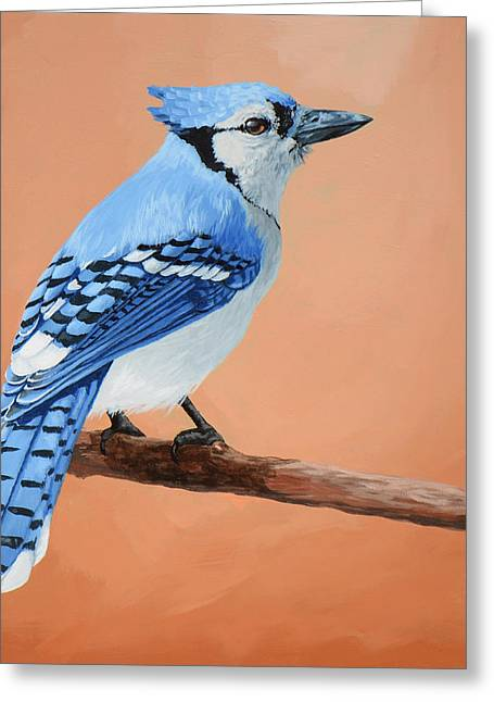 Blue Jay Greeting Card by Lesley Alexander