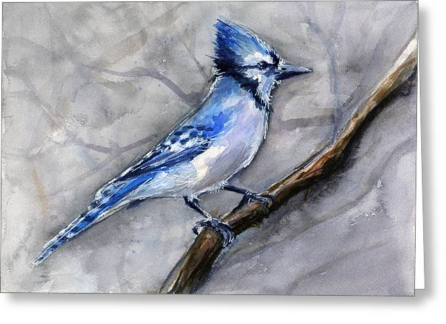 Blue Jay Watercolor Greeting Card by Olga Shvartsur