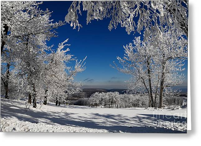 Skiing Christmas Cards Greeting Cards - Blue Knob Greeting Card by Lois Bryan