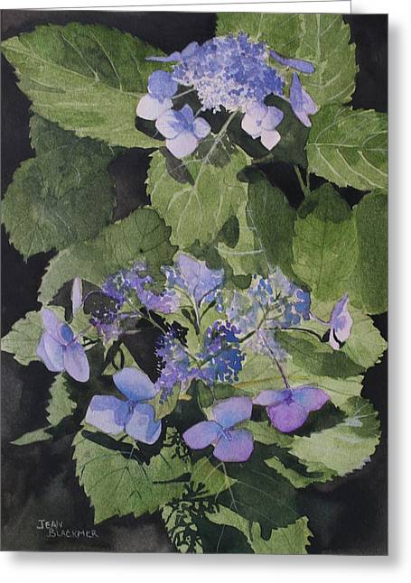Jean Blackmer Greeting Cards - Blue Lace Greeting Card by Jean Blackmer