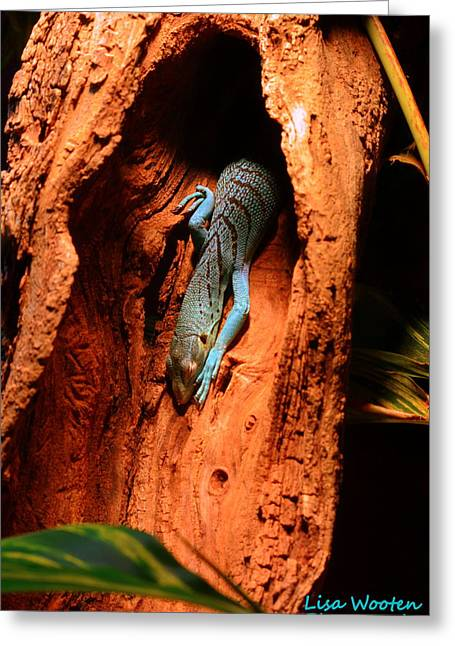 Yellow Greeting Cards - Blue Lizard Greeting Card by Lisa Wooten