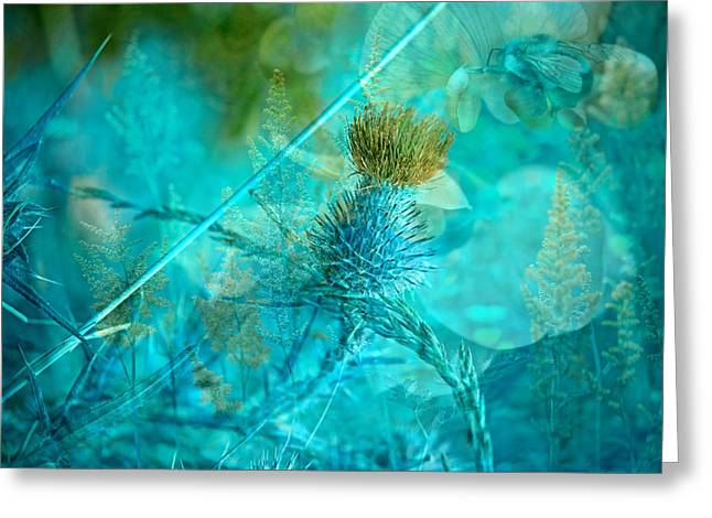 Blue Thistles Greeting Cards - Blue Montage Greeting Card by Bonnie Bruno