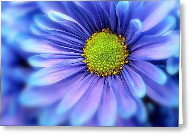 Nature Center Greeting Cards - Blue Mood Greeting Card by Jessica Jenney