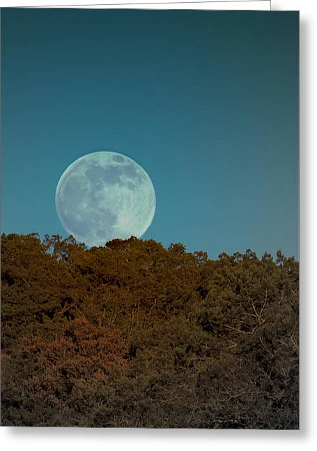 Sunset Framed Prints Greeting Cards - Blue Moon Risign Greeting Card by Karen Musick