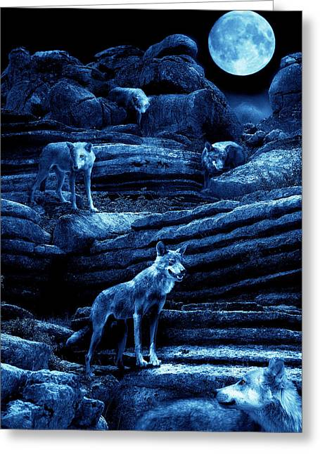 Wolf Moon Greeting Cards - Blue Moon Wolf Pack Greeting Card by Mal Bray