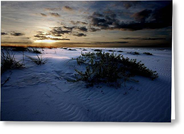 Crimson Tide Digital Art Greeting Cards - Blue Morning Greeting Card by Michael Thomas