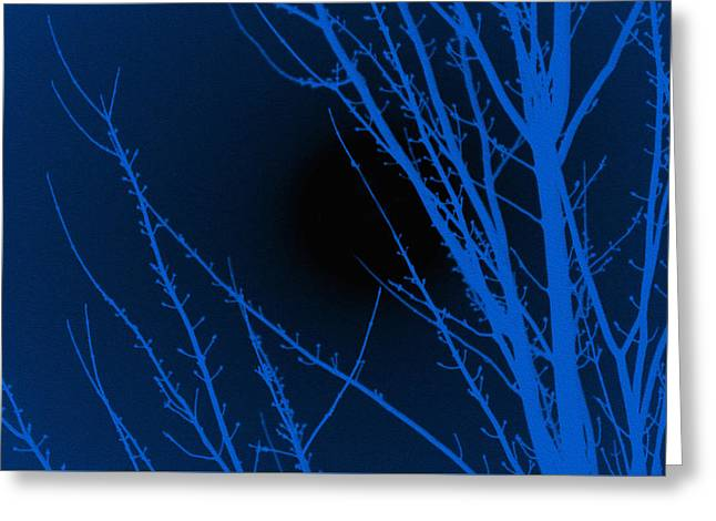 Fantasy Tree Greeting Cards - Blue Night Greeting Card by Sheela Ajith