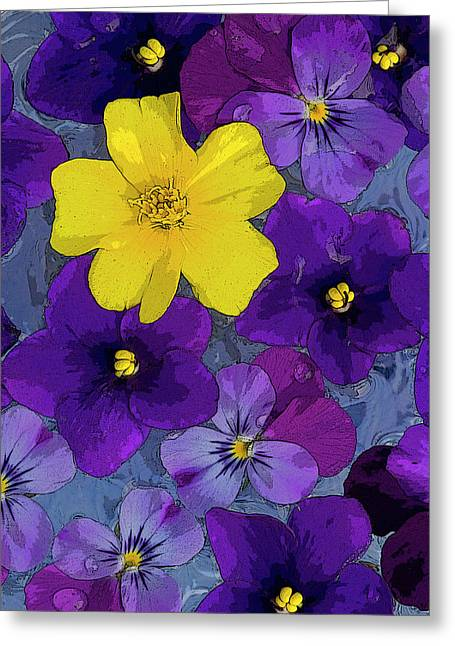 Overs Greeting Cards - Blue Pond Greeting Card by JQ Licensing
