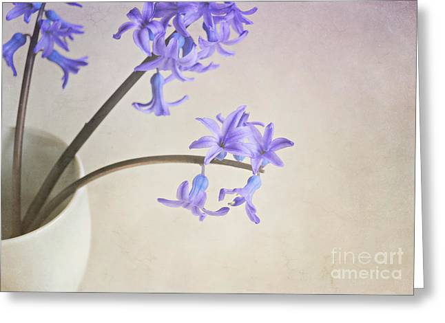 Interior Still Life Greeting Cards - Blue purple flowers in white china cup Greeting Card by Lyn Randle