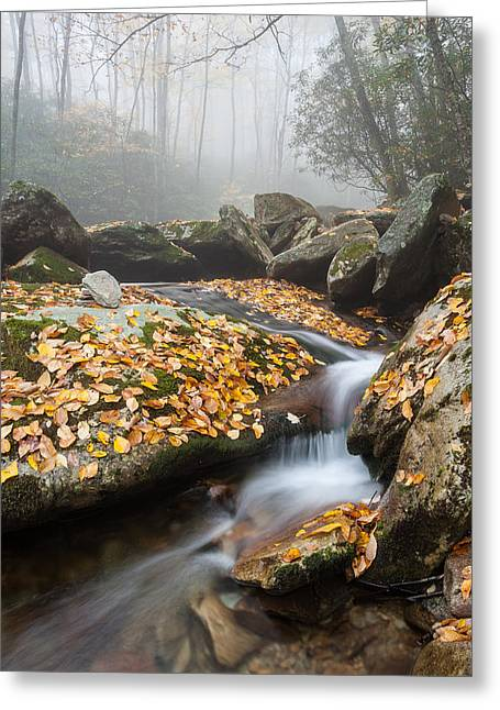 North Fork Greeting Cards - Blue Ridge Mountain Autumn Cascade Greeting Card by Mark VanDyke
