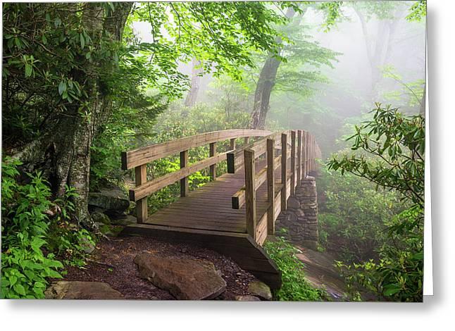 Blue Ridge Parkway Hiking Tanawha Trail Rough Ridge Greeting Card by Dave Allen