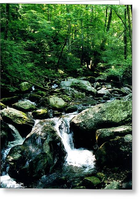 Rush-bed Greeting Cards - Blue Ridge Rushing Creek Greeting Card by Christean Ramage